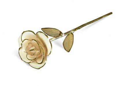 Beige-Gold-Petals-Rose-angle-1-1024x684