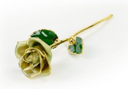 Light-Green-Rose-Only
