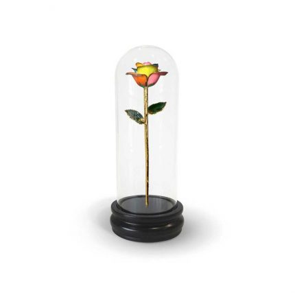 Spectrum Rainbow Rose Gifts with Premium Glass Dome - Infinity Rose USA
