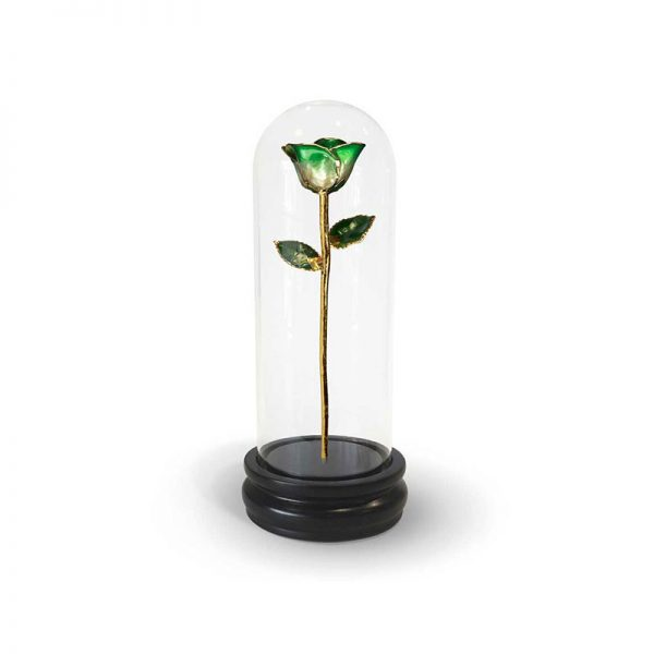 Green Two Tone Rose Gifts with Premium Glass Dome - Infinity Rose USA
