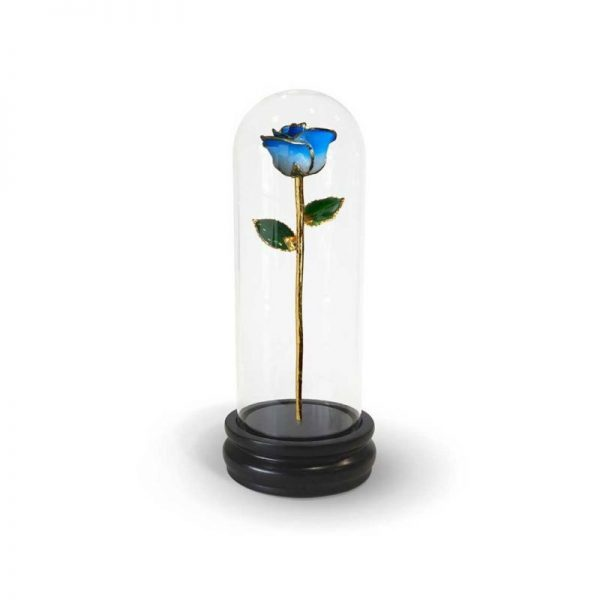 Light Blue Two Tone Rose Gifts with Premium Glass Dome - Infinity Rose USA